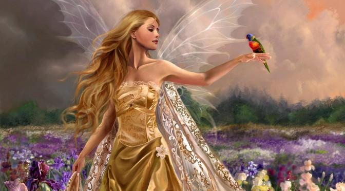 Fairies Dream / Prime Creator Talks About Ascension Through Susie